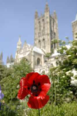 Marking the centenary of the start of the Great War