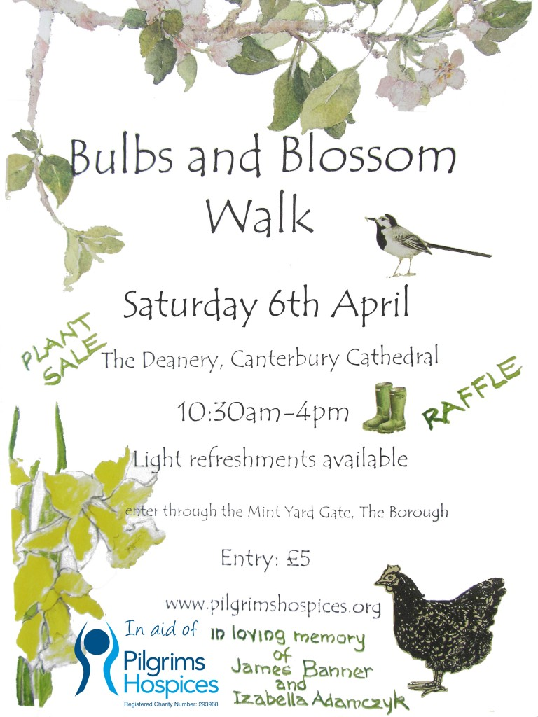Bulbs--Blossom-Walk-Poster