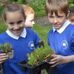 02  |  Poppy planting with St Peter's Methodist School