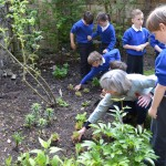 04 (2)  |  Poppy planting with St Peter's Methodist School