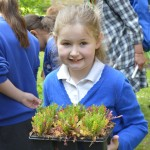 05  |  Poppy planting with St Peter's Methodist School