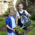 06  |  Poppy planting with St Peter's Methodist School