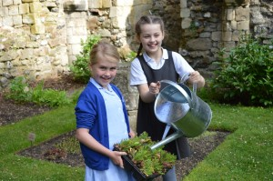 Children plant poppies to mark the centenary of World War One.