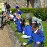 10  |  Poppy planting with St Peter's Methodist School