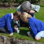 11  |  Poppy planting with St Peter's Methodist School