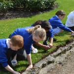 13  |  Poppy planting with St Peter's Methodist School