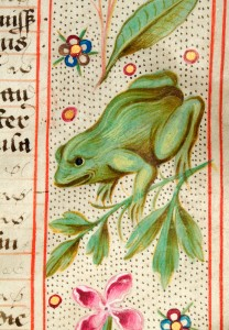 Canterbury's James I charter: Frog
