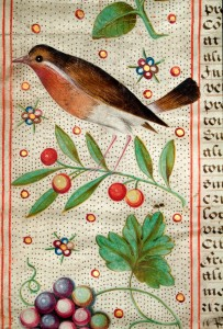 Canterbury's James I charter: Bird